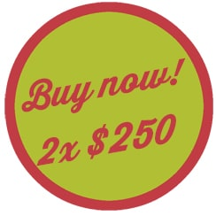 button buy now 2 x $250