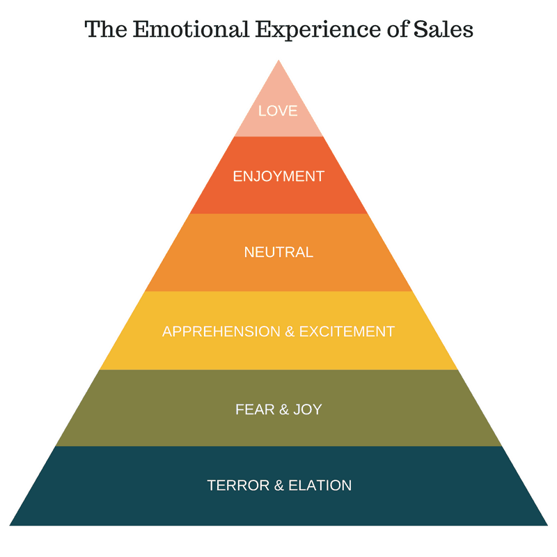 The Emotional Experience of Sales Model
